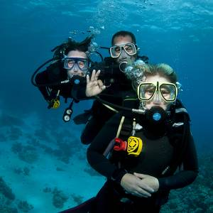 Open Water Diver course online