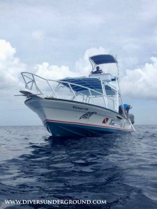 Cozumel Dive Charter