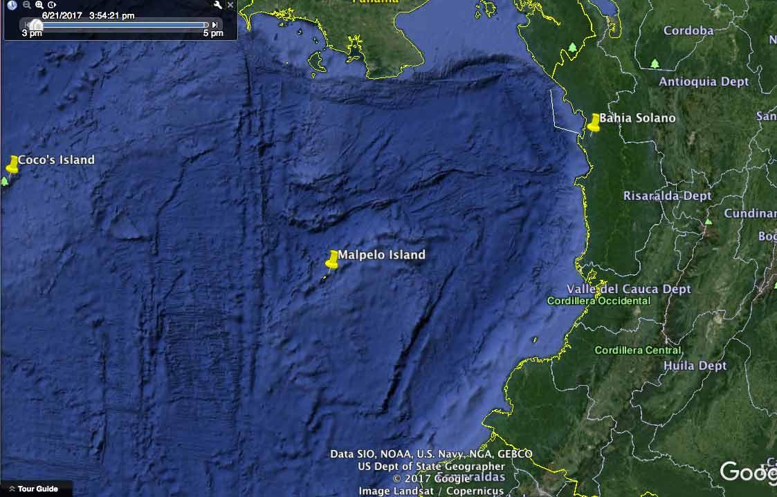 Sardine Run South America