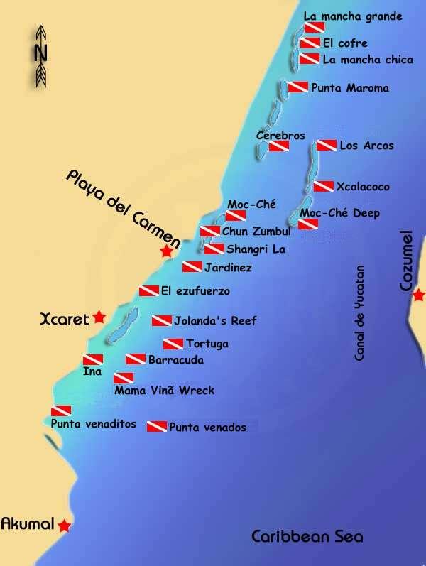 Scuba Diving Playa Del Carmen