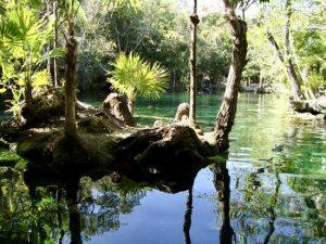Cenotes Chikin Ha