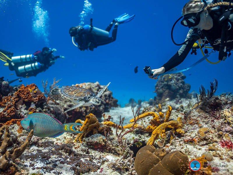 Cozumel Marine National Park