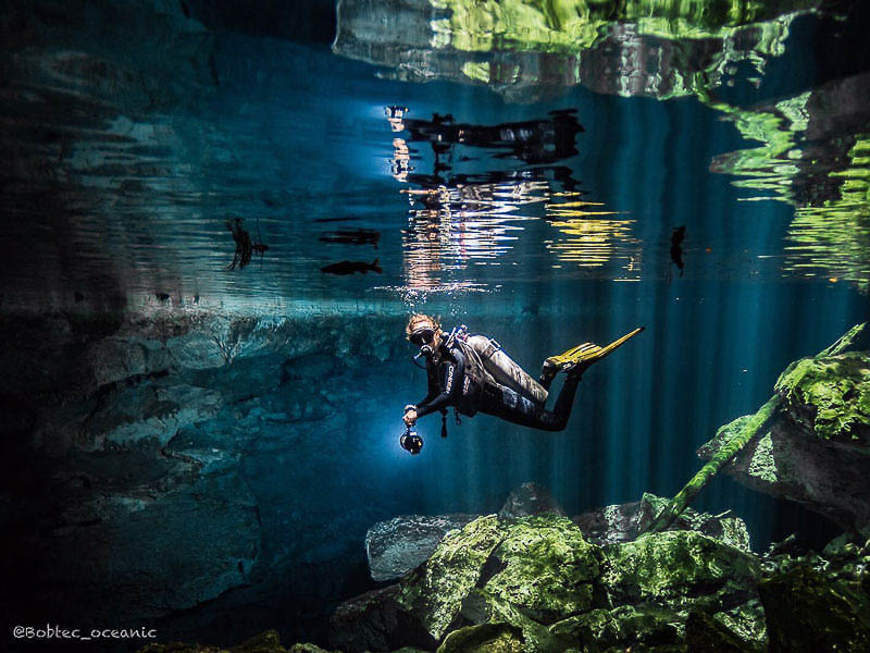 Scuba diving in cenotes playa del carmen and cozumel - Dive shops near me ...