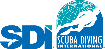 Scuba Diving International logo divers underground